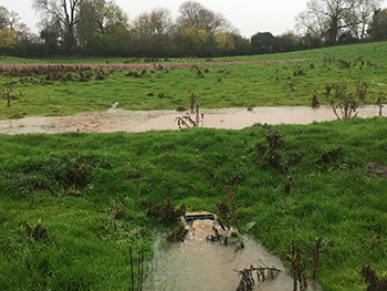Clarborough Natural Flood Management Project_cameo